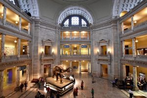 michellefortephotography_overview-of-museum-of-natural-history-atrium_mydccool-via-crowdriff