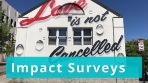 Impact Surveys