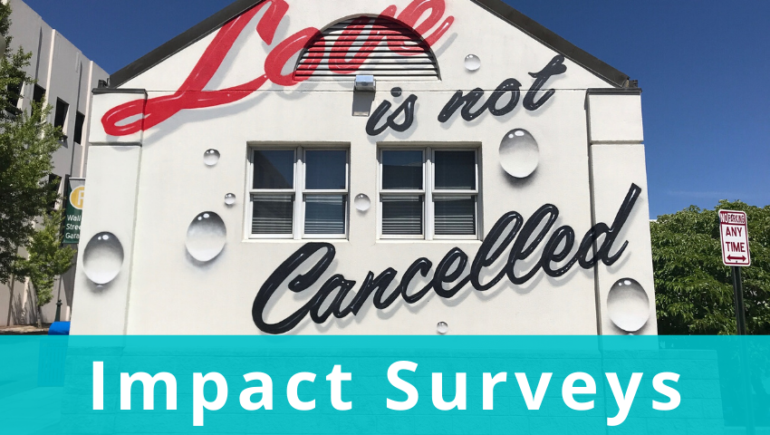 Impact Surveys